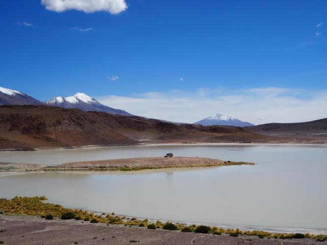 Laguna honda tour salar Uyuni