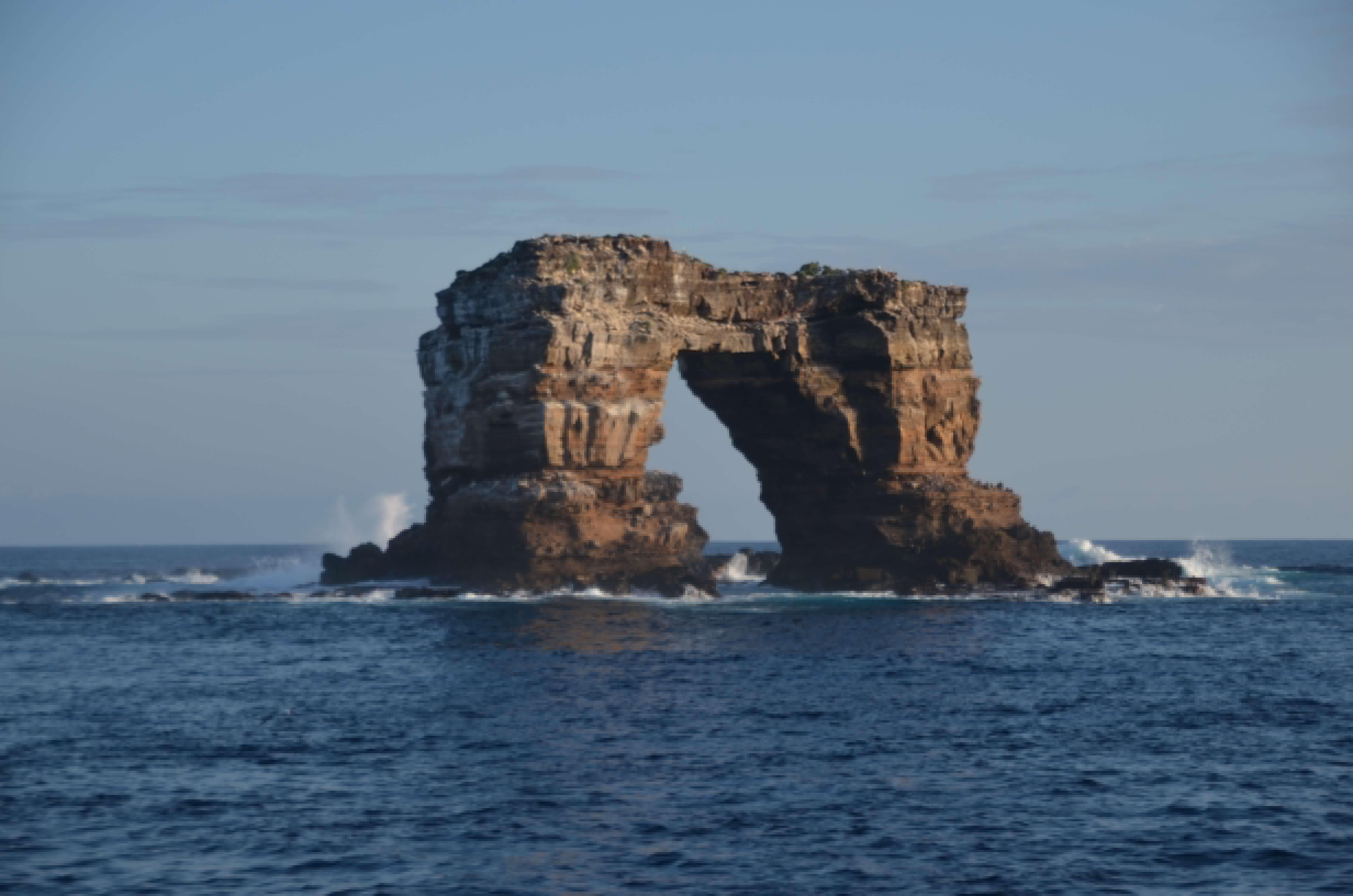 Buceo galápagos crucero