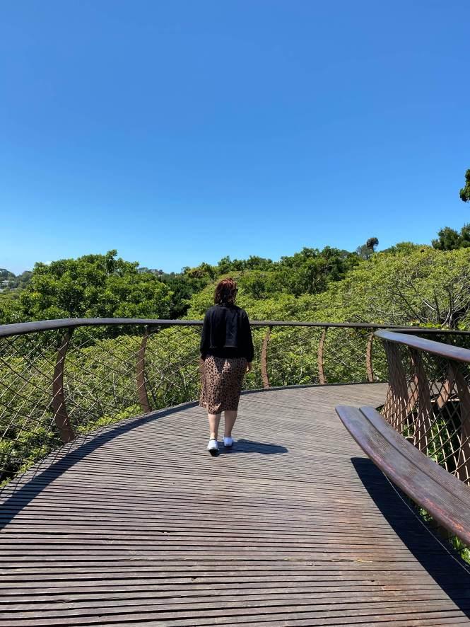 Kirstenbosch Ciudad del Cabo